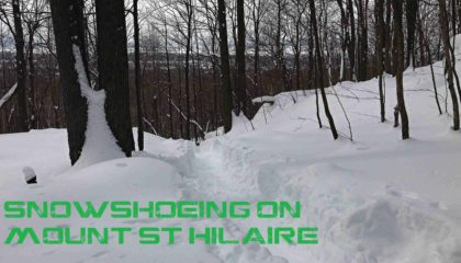 Snowshoeing up Mount St-Hilaire