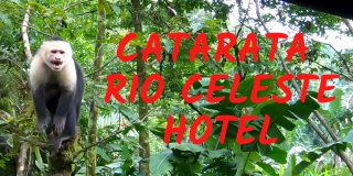 Hotel Catarata Rio Celeste in Costa Rica